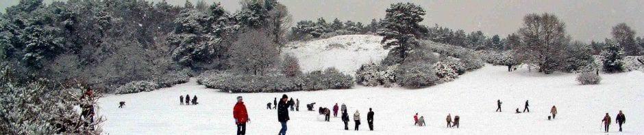 Sullington Warren winter scene