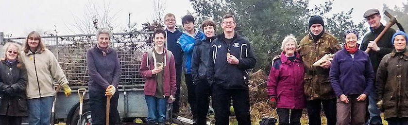 Sullington Warren group