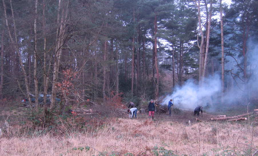 Working party viewed from wet heathland area