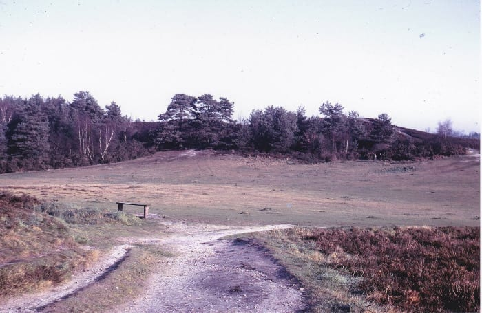 The Green from Woodpecker Lane track January 1975