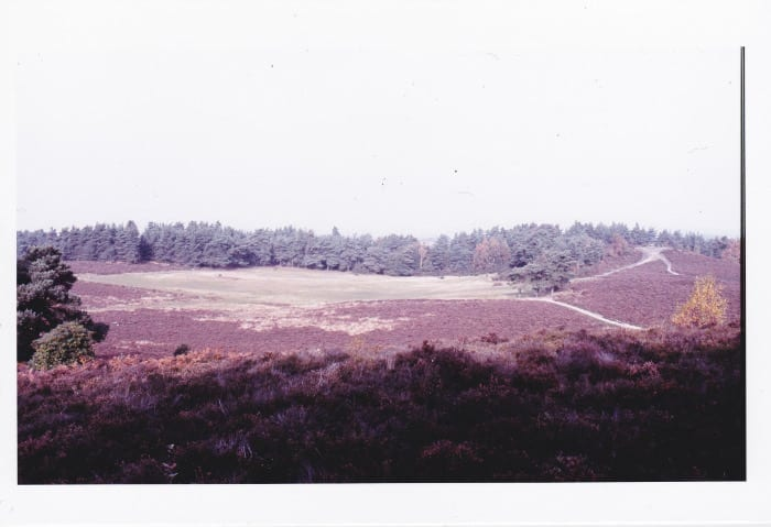 View across the Green to the stone seat July 1983