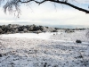 warren winter scene-3